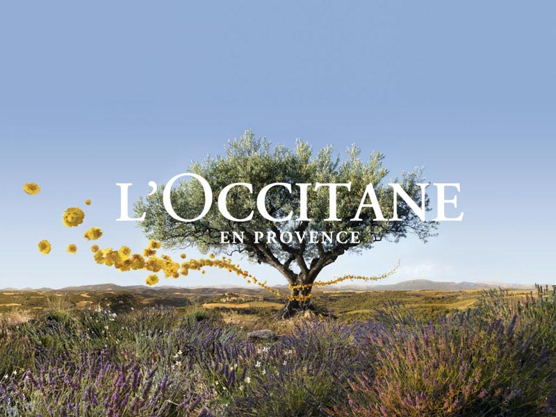 analysis of l u0026 39 occitane marketing strategy in china