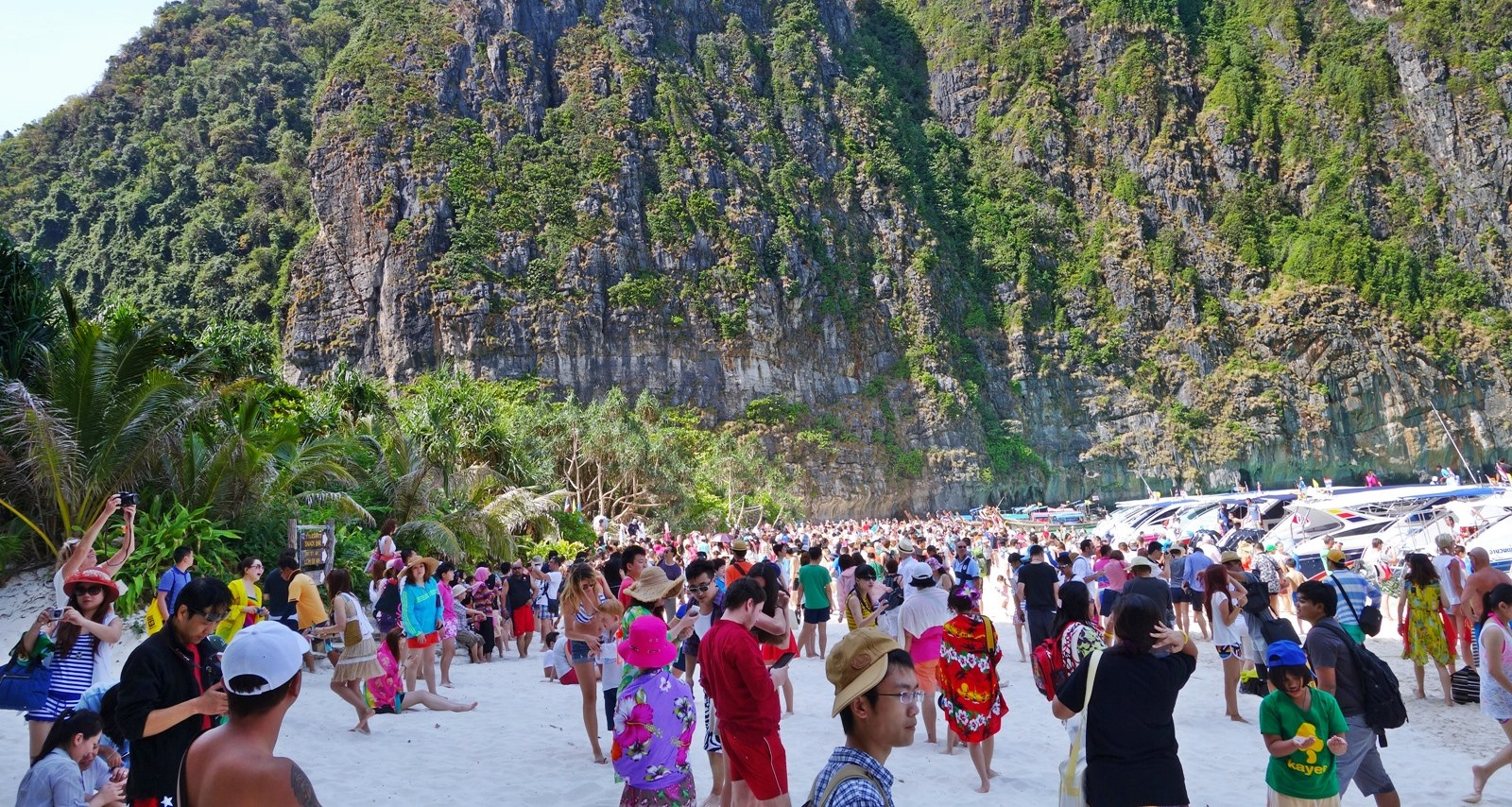 Maya-Bay-Packed-feat