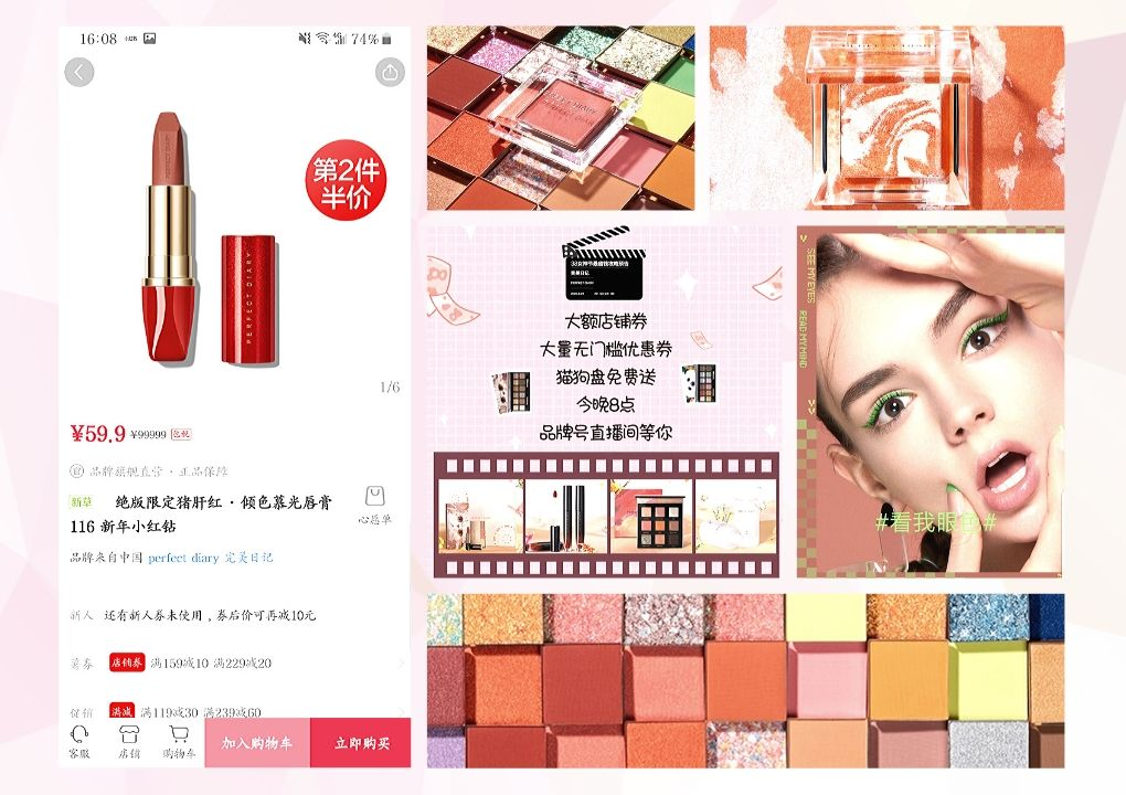 perfect diary china cosmetic case study