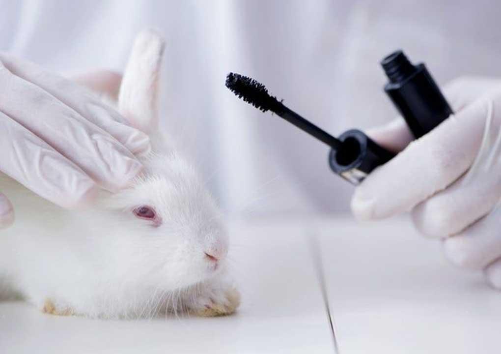 Abandon Animal Testing